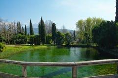 Ducks on Lago Di Garda, Italy. Stock Photo