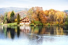 Ducks, lake and cottage in the autumn nature. Stock Photography