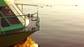 Ducks in lake dock in sunny evening stock video