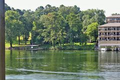Ducks on Lake Hamilton Stock Image