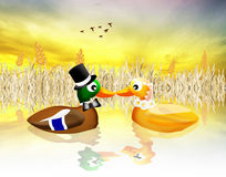 Ducks in love Royalty Free Stock Photo
