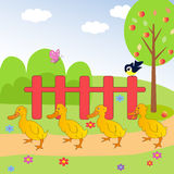 Ducks in the meadow royalty free illustration