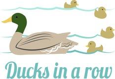 Ducks In A Row Royalty Free Stock Photos