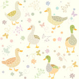 Ducks seamless Stock Images