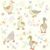 Ducks seamless pattern Royalty Free Stock Photography