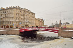 Ducks swim in ice-hole under the Red bridge over the Moika river Royalty Free Stock Images