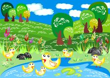 Ducks Swim in Spring Time. Flock of Ducks bathing in spring time. Corel Draw 13 file, CMYK Royalty Free Stock Photo