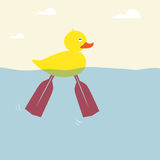 The ducks are swimming. With a foot paddle Royalty Free Stock Photos