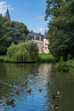 Ducks swimming in the pond with the castle of Théméricourt in Royalty Free Stock Photography