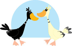 Ducks royalty free illustration