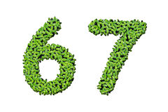 Duckweed alphabet letters - Number 6, 7 Stock Photo
