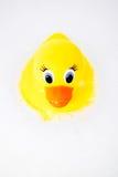 ducky резина Стоковая Фотография