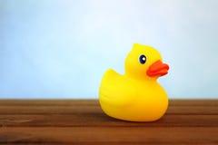 ducky Стоковые Изображения RF