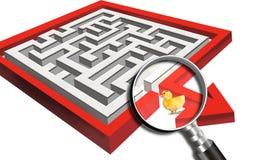 Ducky in een labyrint Stock Foto's