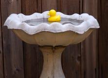 ducky gummi royaltyfria bilder