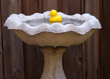 ducky gumy Obrazy Royalty Free