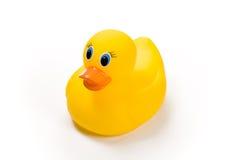 Ducky parecido a la goma Fotos de archivo libres de regalías