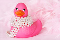 Ducky in Pearls stock photos
