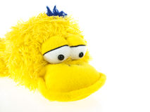 Ducky plush Stock Photo