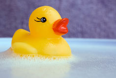 Ducky's Bathtime Royalty Free Stock Photography