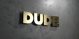 Dude - Gold sign mounted on glossy marble wall  - 3D rendered royalty free stock illustration Royalty Free Stock Photos