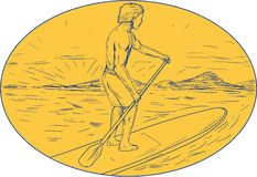 Dude Stand Up Paddle Board Oval Drawing Royalty Free Stock Photo