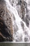 Dudhsagar -瀑布在密林 免版税库存图片