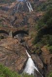 Dudhsagar -瀑布在密林 免版税库存照片