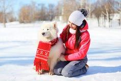Dueño de la mujer con el perro blanco del samoyedo que se sienta en nieve en invierno Imágenes de archivo libres de regalías