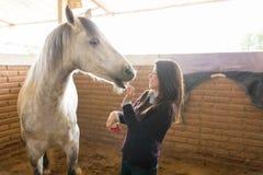 Dueño feliz con equino en rancho fotografía de archivo