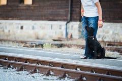 Dueño y su Labrador negro que esperan el tren Imagenes de archivo