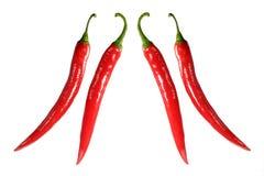 Due accoppiamenti dei peperoncini rossi immagine stock libera da diritti