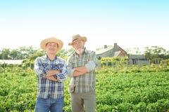 Due agricoltori che stanno nel campo con le piante verdi Fotografia Stock Libera da Diritti