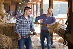 Due agricoltori con le forche Fotografie Stock Libere da Diritti