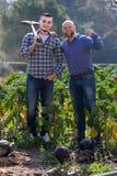Due agricoltori maschii alla piantagione Immagine Stock