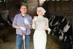 Due agricoltori in stalla con bicchiere di latte Immagine Stock