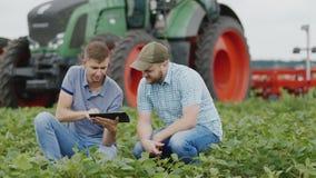 Due agronomi lavorano nel campo, studiante lo stato delle piante Nei precedenti un grande trattore stock footage