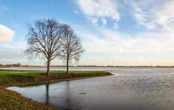 Due alberi con i rami nudi su uno sputo di terra nell'acqua fotografia stock libera da diritti