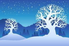 Due alberi di inverno con neve 2 Immagine Stock
