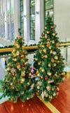 Due alberi di Natale visualizzati al Galerija Centrs a Riga Fotografia Stock Libera da Diritti