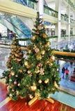 Due alberi di Natale visualizzati a Galerija Centrs a Riga Immagine Stock Libera da Diritti