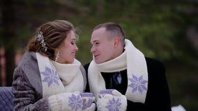Due amanti bevono il caff? caldo che si siede su un banco nel parco nell'inverno Stanno indossando le sciarpe ed i guanti di corr archivi video