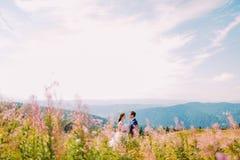 Due amanti - giovane bella ragazza in vestito bianco e nel suo uomo bello, colpo sul prato Fiori del campo a priorità alta Fotografia Stock