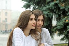 Due amiche stanno sedendo vicino all'albero di Natale Fotografia Stock Libera da Diritti