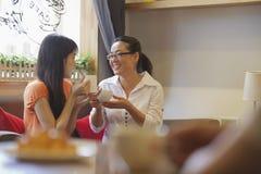 Due amici che si siedono in una caffetteria ed in una conversazione Immagine Stock Libera da Diritti