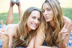 Due amici femminili immagini stock