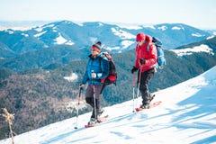 Due amici nelle montagne Fotografie Stock