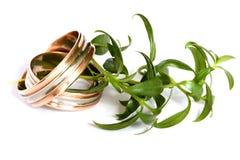 Due anelli di cerimonia nuziale Fotografia Stock