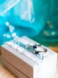 Due anelli di cerimonia nuziale Fotografie Stock Libere da Diritti