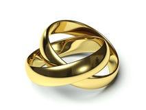 Due anelli di cerimonia nuziale dell'oro. Immagine Stock